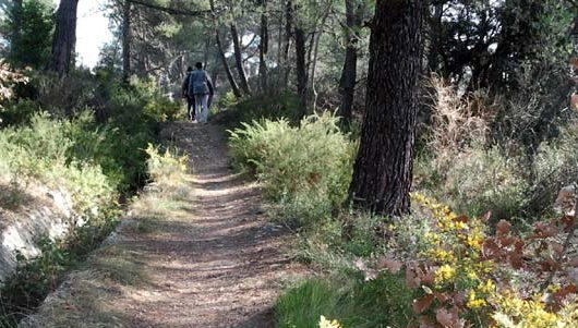 Miniature de l'article intitulé : Chemins pédestres
